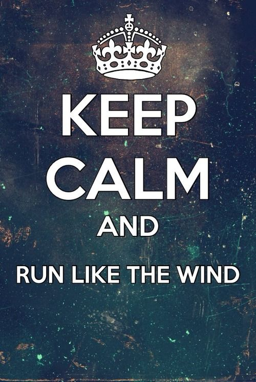 wind9